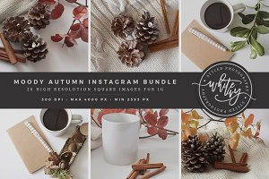 Moody Autumn Instagram Stock Bundle