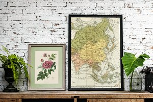 Frame of Rose Illustration and Maps