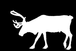 christmas deer white on black