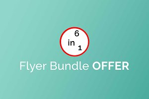Flyer Bundle Offer