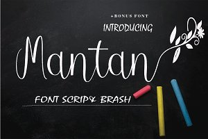 Mantan FONT BRUSH
