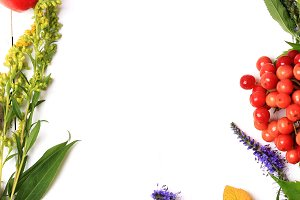 autumn composition with flowers and berries on a white wooden background