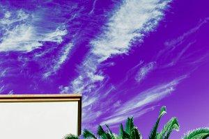 Palms and Urban. Purple