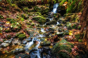 Autumn at the Waterfall