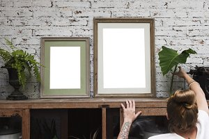 Plants and picture frames (PNG)
