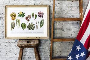 drawing of flowers and country flag