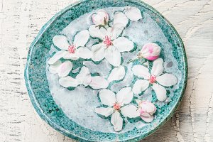 Blue water bowl with spring blossom