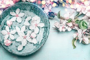 Blue water bowl and white blossom