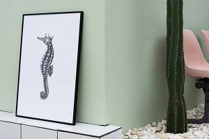 Seahorse in photo frame