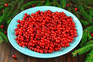 Cowberry, foxberry, cranberry, lingonberry on a blue ceramic dish on a brown wooden table. Surrounded by fir branches.