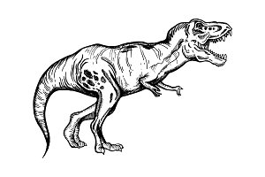 Tyrannosaur engraving vector illustration