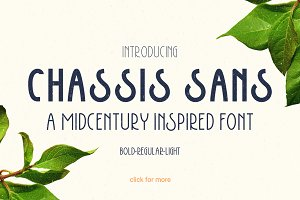Chassis Sans Font Family