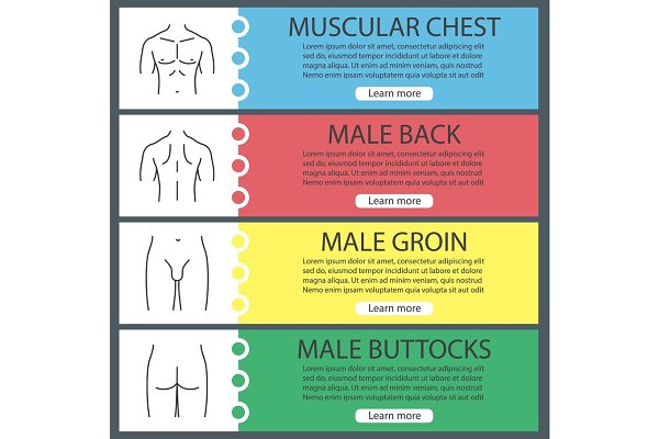 Male body parts web banner template…