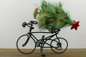 Transporting the Christmas tree
