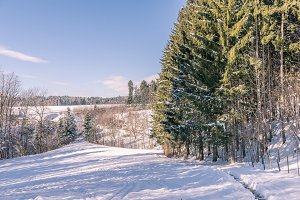Landscape wintertime
