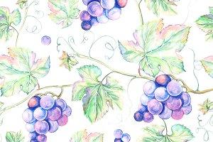 Watercolor Grape