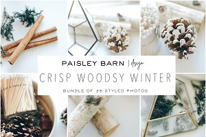 Crisp Woodsy Winter Photo Bundle
