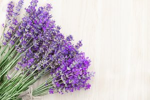 Lavender flowers bouquet