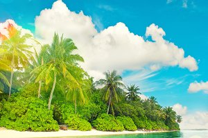 Tropical island beach landscape