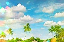 Tropical island sand beach