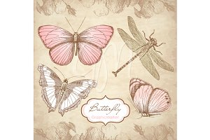 Butterfly Clip Art and digital paper