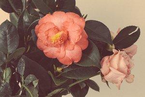 Vintage Bohemian Rose Bouquet