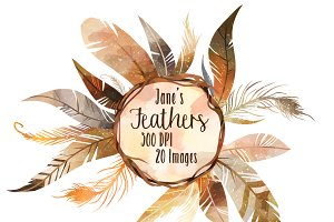 Brown Feathers Clipart