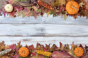 Autumn Decor Borders