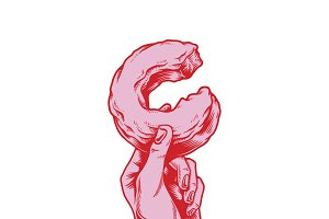 Illustration of hand holding donut