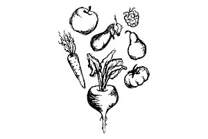 Vegetable fruit monochrome ink hand drawn set vector