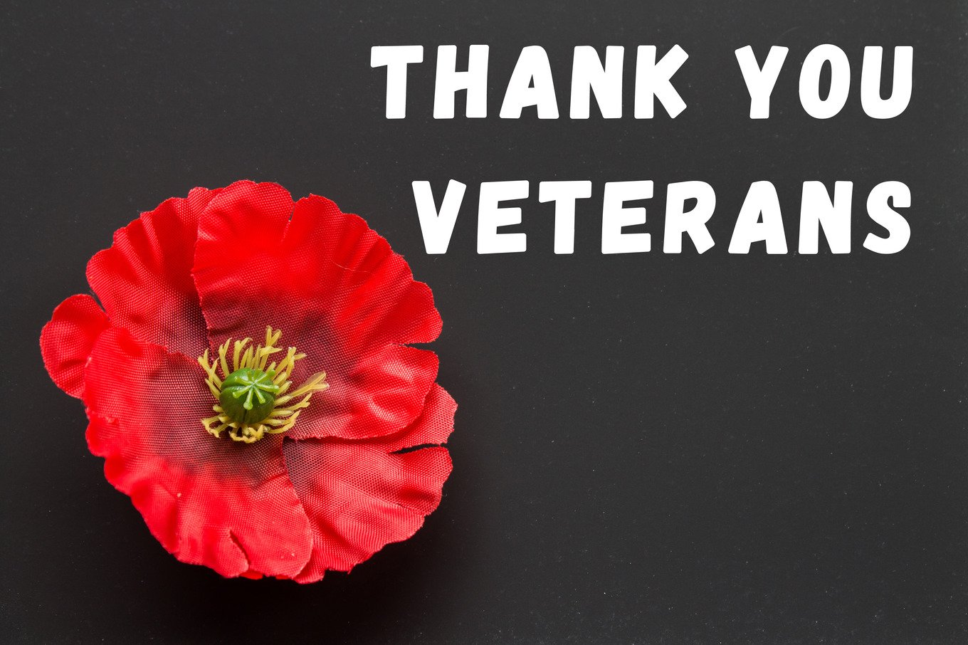 The Text Thank You Veterans Written In A Chalkboard And Red Poppy On