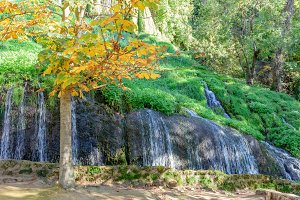 Waterfall of the park in autumn I
