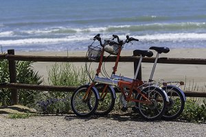 Folding bicycles.
