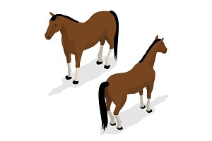 Western Horse with saddle and bridle. Isometric vector illustration