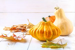 Pumpkin and patty pan and maple, oak yellow leaves on a white wooden table. Autumn harvest.