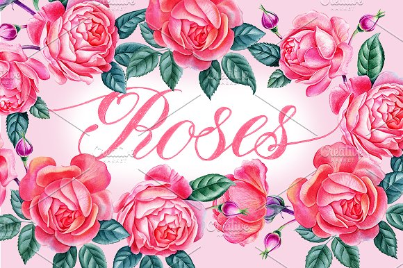 Roses-Graphicriver中文最全的素材分享平台