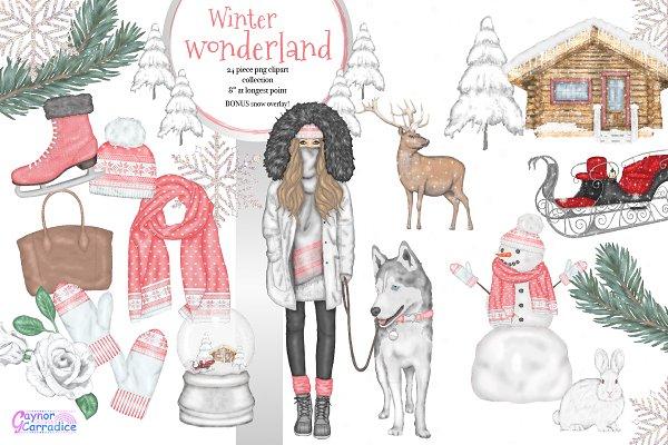 Winter wonderland collection