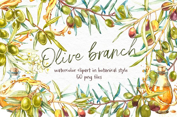 Olive. Watercolor clipart -Graphicriver中文最全的素材分享平台