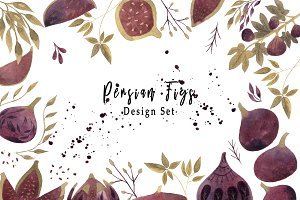 Watercolor Persian Figs