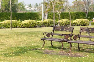 Benches on the lawn