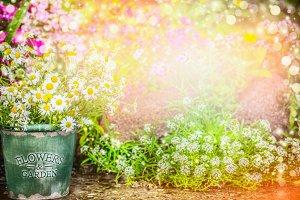 Summer gardening