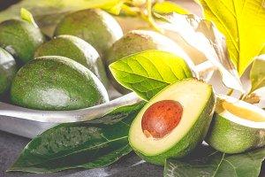 Fresh avocado with avocado tree leaves. Close up