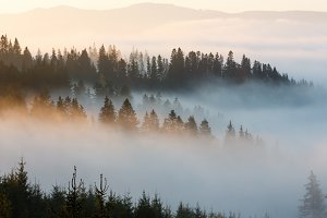 Autumn Carpathians landscape