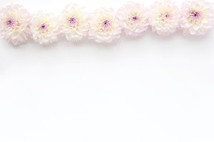 Styled stock photo - white dahlias
