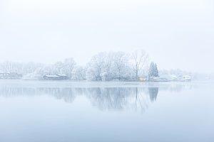 Frozen harbour trees on the Nieuwe Meer.