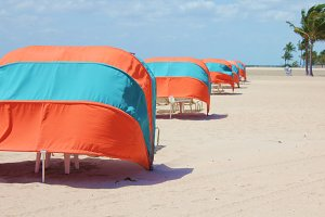 Row of Beach Umbrellas