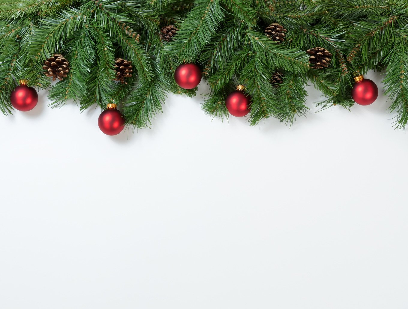 Christmas branches on white holiday photos creative market