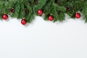 Christmas Branches on white