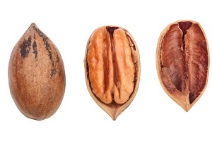 Single pecan nut isolated on white background, set of three different foreshortenings. Top view