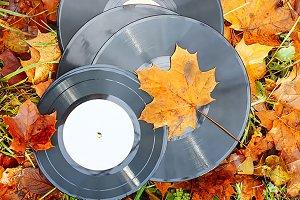 Vintage vinyl records on fall leaves